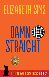Damn Straight by Elizabeth Sims now on Kindle and in paperback!